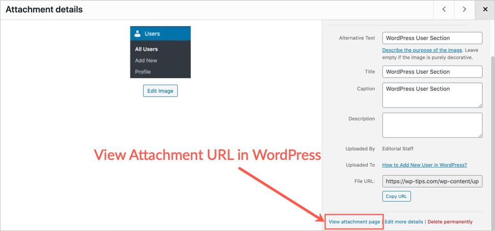 View Attachment URL in WordPress