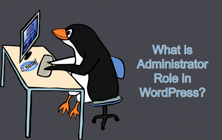 What is Administrator Role in WordPress?