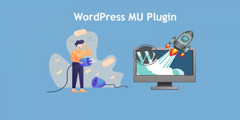 WordPress MU Plugin